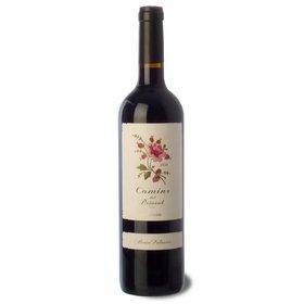 Priorat Young Red Crianza wine Camins del Priorat 2013