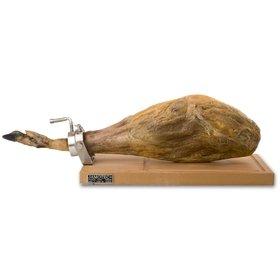 Jamotec J1+ rotary ham holder